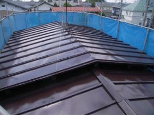 屋根ファインルーフSi