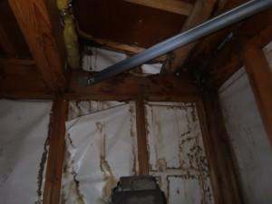 浴室天井裏雨ジミ