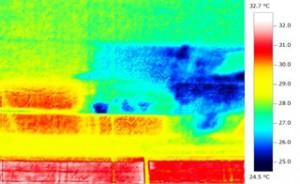 天井雨漏りサーモグラフィー画像