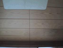 天井雨漏り可視画像