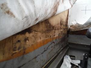 手摺壁の腐朽菌