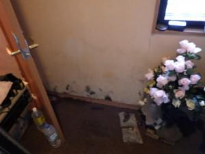 雨漏りで壁にカビが生えている