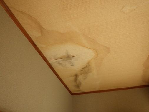 天井から雨漏り再現