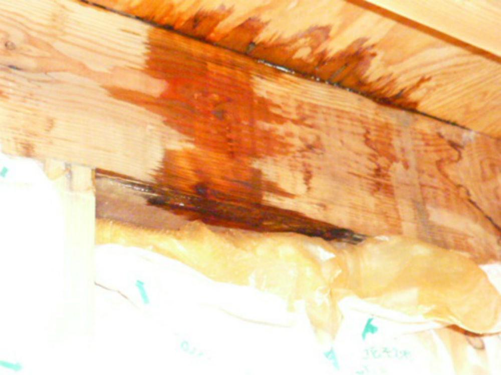 浴室天井裏でのシミ跡