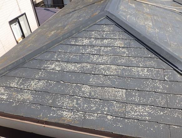 屋根塗膜の剥れ