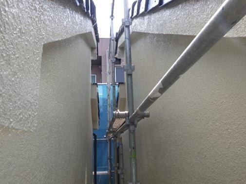 蔦が生えていた外壁の塗装