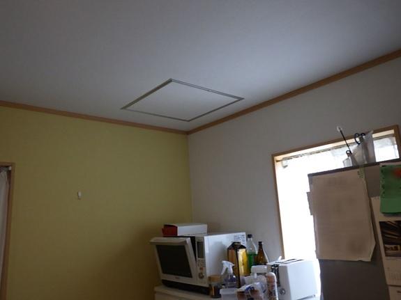 カビの臭いがする天井