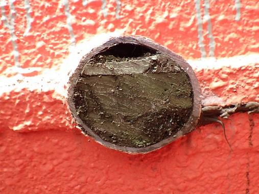 排水管のウレタンの詰り