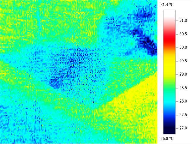 天井から水が滴っているときに、赤外線サーモグラフィーにて表面温度を撮影しました。
